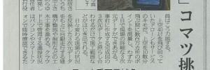 s-20151007_日本経済新聞_ビジネスtoday